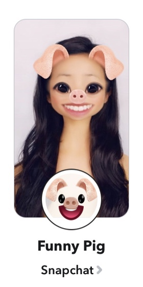 Filter snapchat pig Snapchat Lenses